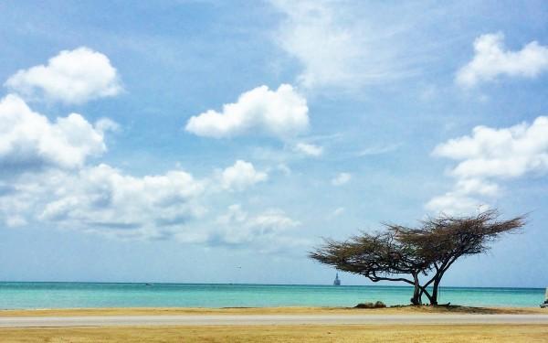 Malmok beach, Aruba