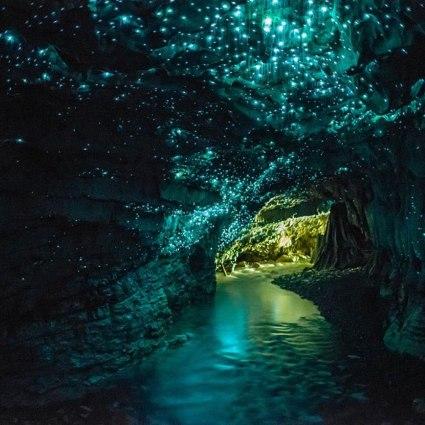 Glowworm, a surpreendente e brilhante caverna em Waitomo, na Nova Zelândia