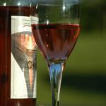 Bordeaux Fête Le Vin: Festivais pelo mundo