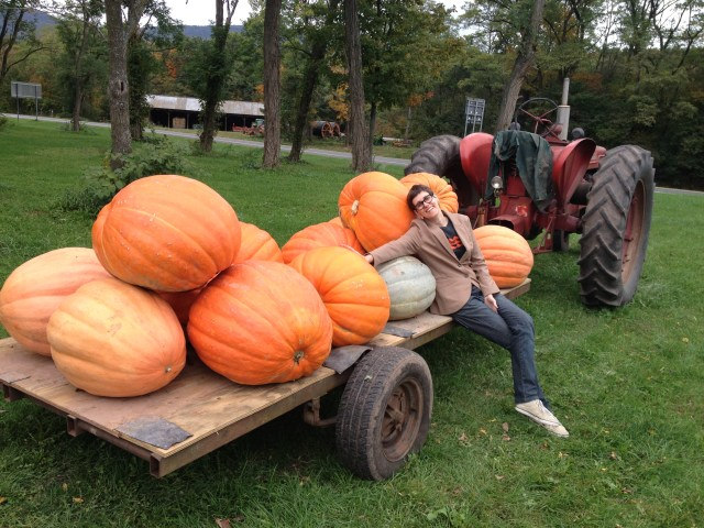 Dez dias por Nova Iorque_pumpkin_Viajando bem e barato