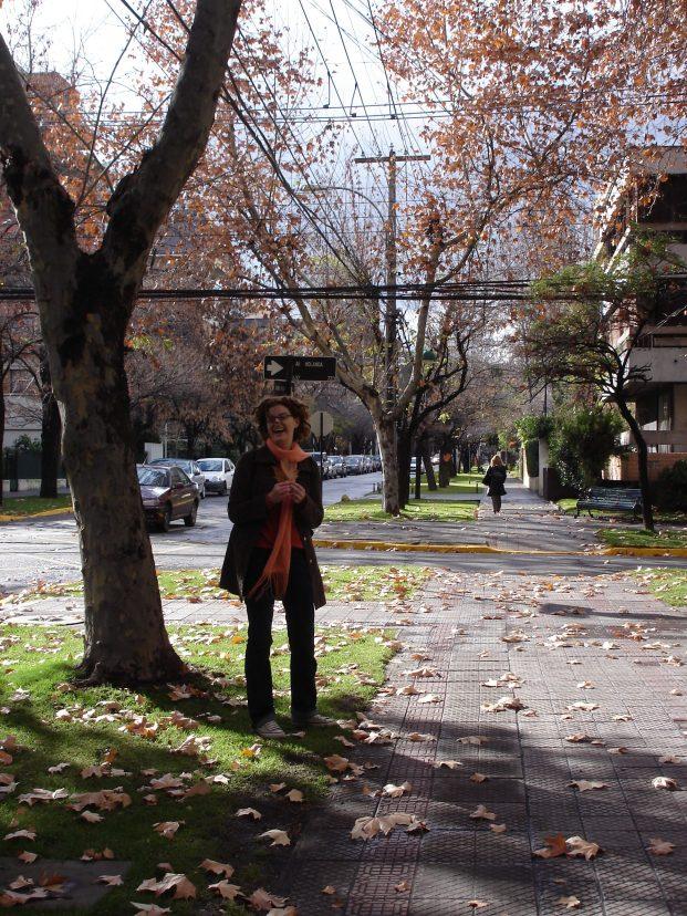 Roteiro de 4 dias de viagem para Santiago_Dia 1_Viajando bem e barato
