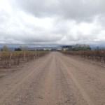 Passeio pelas vinícolas argentinas de Mendoza – Dia 1