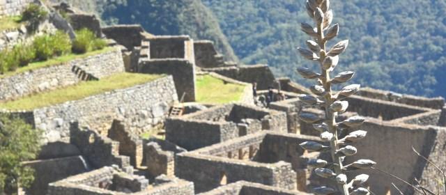 Roteiro para o Peru: a viagem da Isabella