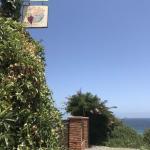 Onde se hospedar em Algarrobo no Chile, a cidade-base para conhecer as vinícolas do Valle de Casablanca e o litoral chileno