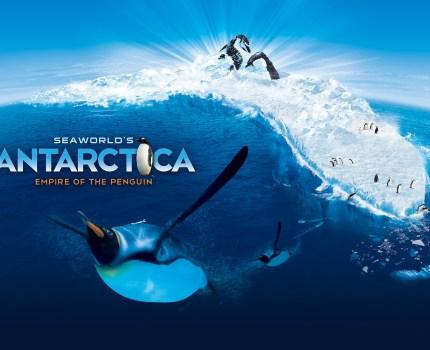 Sea World em Orlando anuncia data de inauguração da nova atração Antarctica: Empire of the Penguin