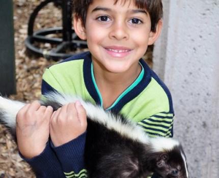 Miami com crianças: Jungle Island, um parque exótico onde interagir com animais!