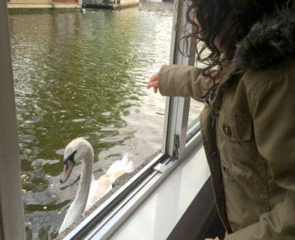 Alugar uma casa-barco em Amsterdam: uma boa ideia com crianças