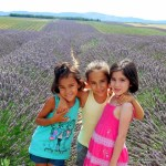 França com crianças: 5 dias de carro pela Provence