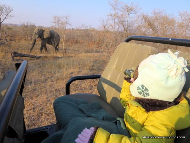 safari-com-criancas-africa-do-sul