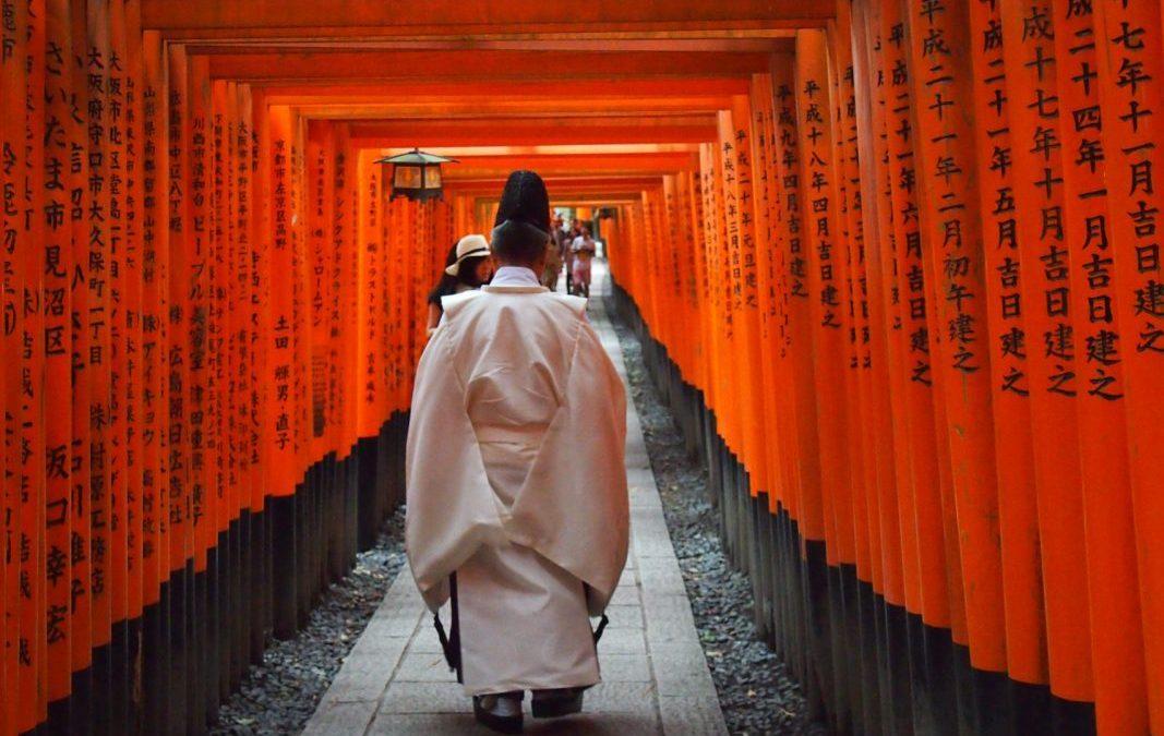 Visita al Fushimi Inari-Thaisa a primera hora de la mañana