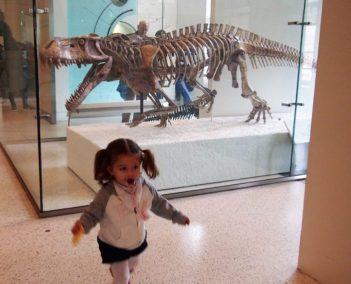 museo_historia_natural_ny
