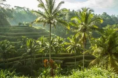 visa-bali-indonesia
