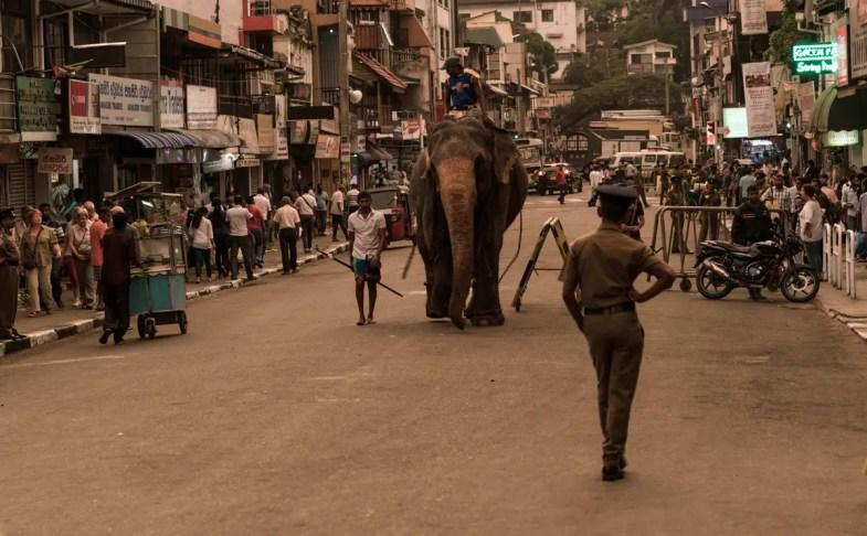 SriLanka-viajar-a-india