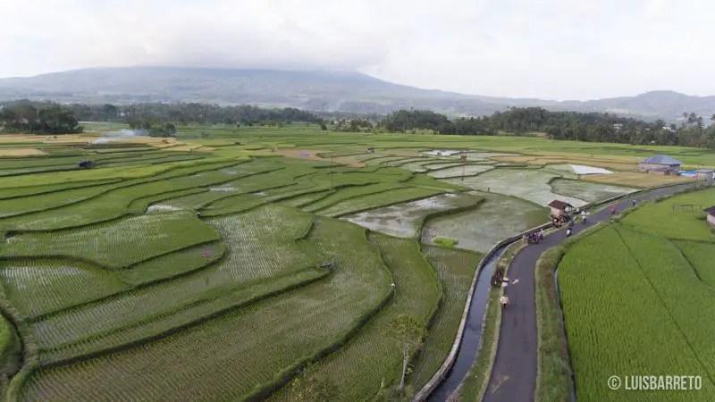 indonesia-bali-flores-java-sumatra