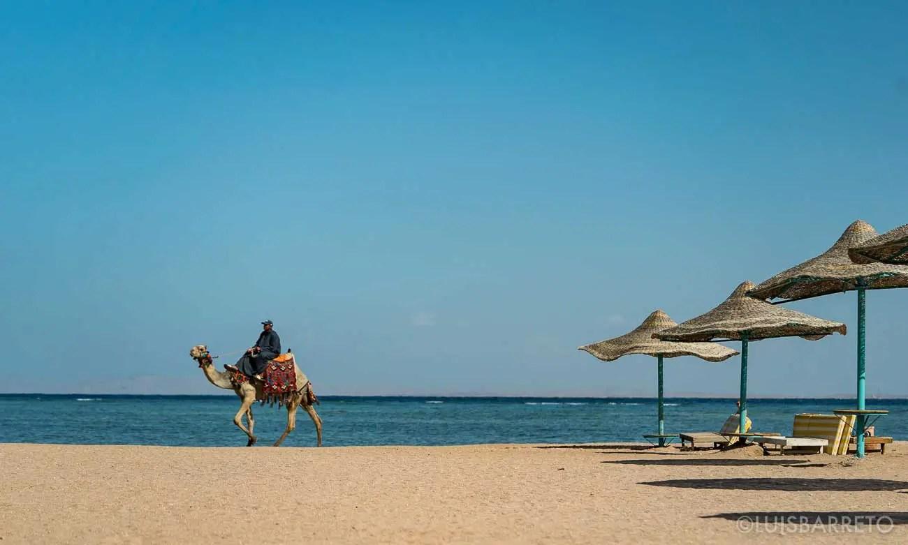 EGIPTO, COLOMVIAJEROS