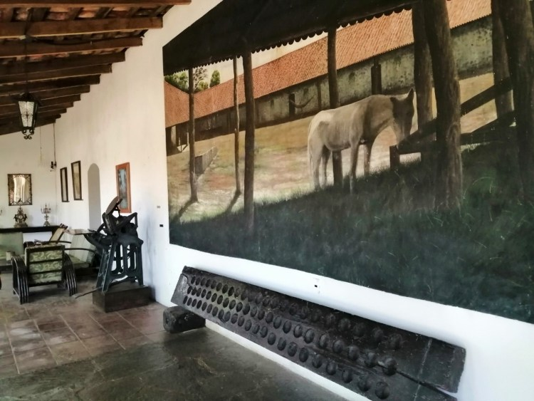 Museo Alejandro Cotto