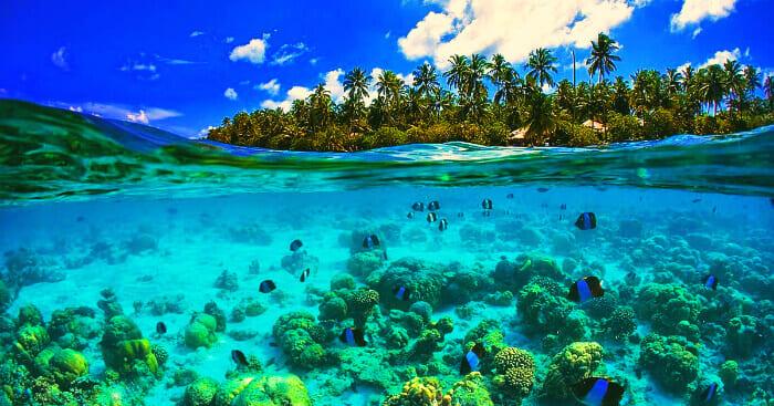 snorkel islas seychelles