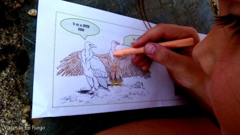 Completando el cuaderno de campo. Magistral la clase sobre buitres de Esther