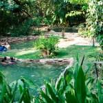 Chapada dos Veadeiros: Conhecendo Alto Paraíso, Jardim de Maytrea e Águas Termais do Éden