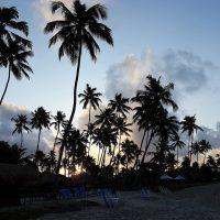 Praia dos Carneiros - Paraíso em Tamandaré