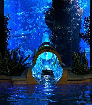aquário_hotel_las_vegas