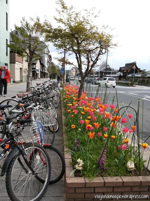 bicicletas_sem trava_floreira_tulipas_Kyoto