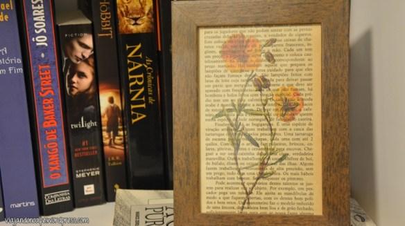 porta retrato_decoração_estante_livros