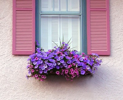 floreira janela