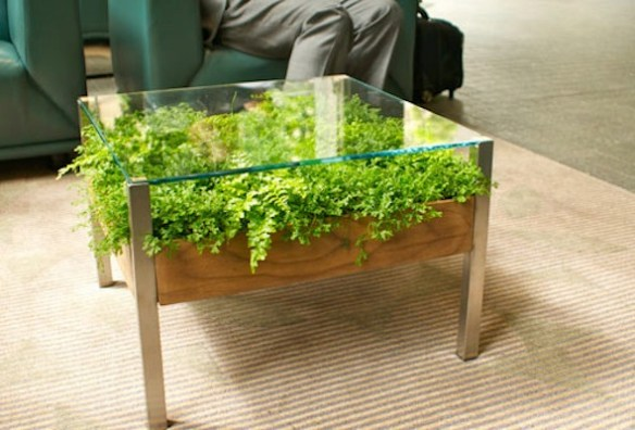 mesa-de-centro-nicho plantas mesa viva verde