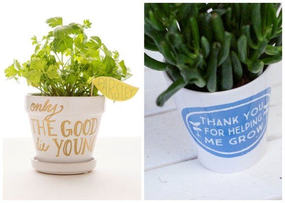 frases-palavras-vasos-plantas-ideias-decoracao-personalizar-2