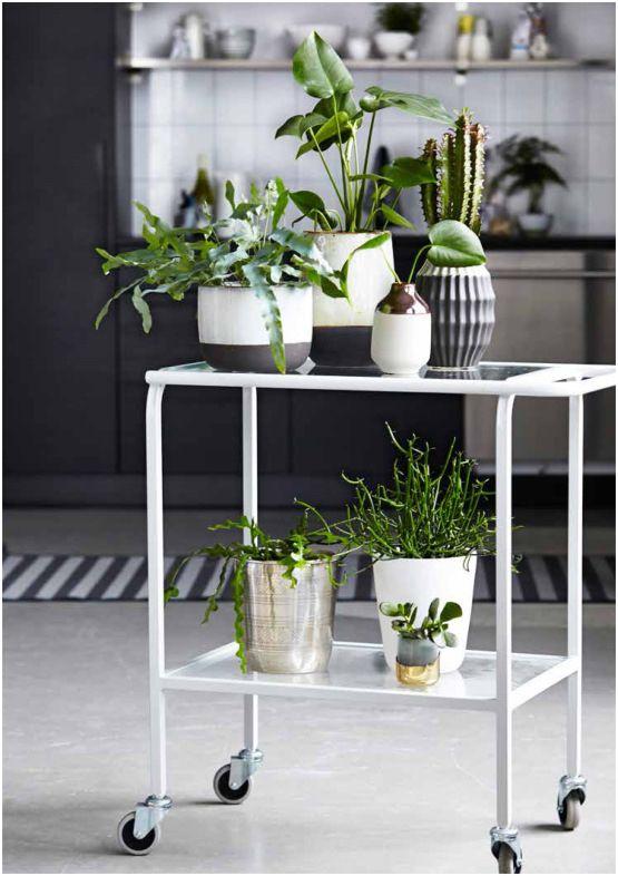 vasos plantas decor escandinava carrinho bar minimalista