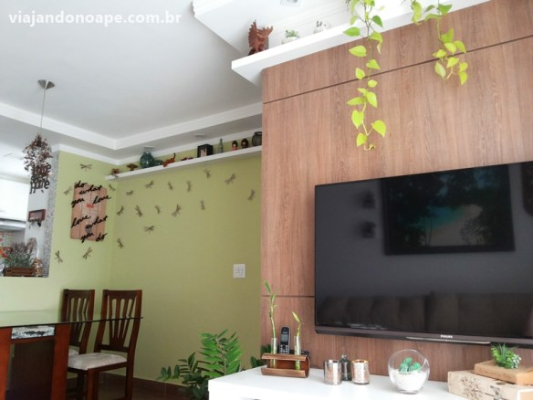jiboia plantas para ambientes internos decoracao sala prateleira alta