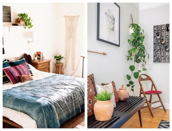plantas na decoracao plantas para ambientes internos jiboia plantas suspensas prateleiras pendentes parede
