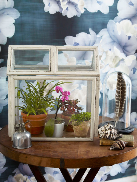 terrario mini estufa diy faca voce mesmo reaproveitando porta retrato reciclagem