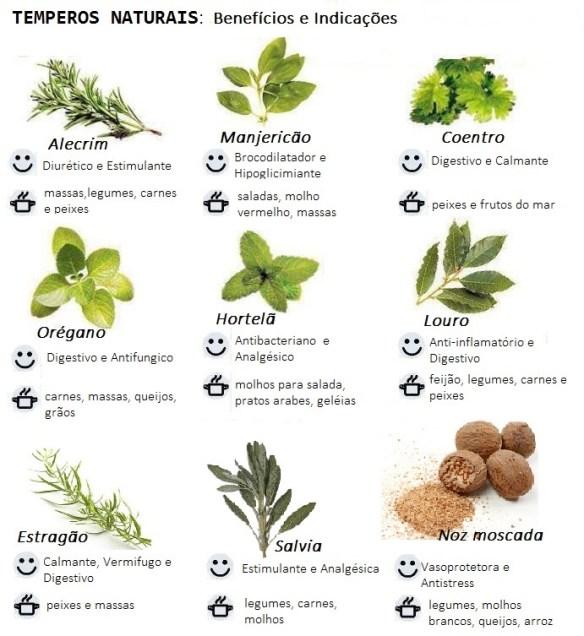 Temperos ervas e beneficios