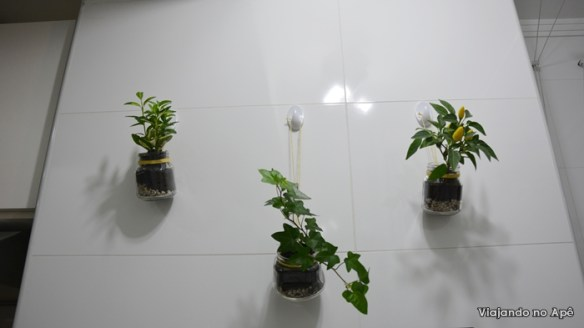 plantas penduradas lavanderia area de serviço