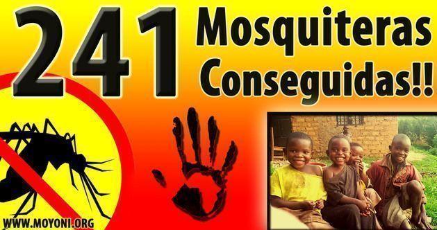 241 mosquiteras