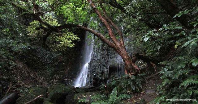 matai falls the Catlins