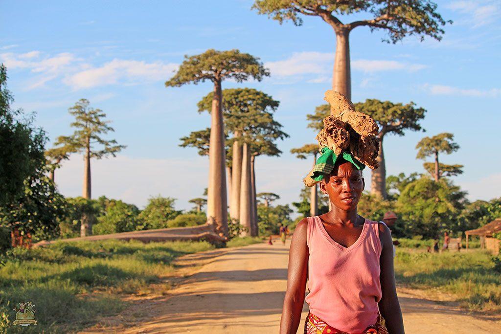 mujer en avenida baobabs