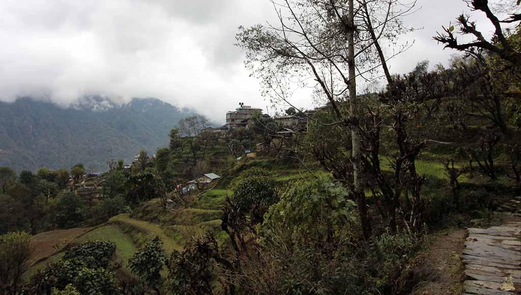 trekking al Campamento Base del Annapurna ghandruk