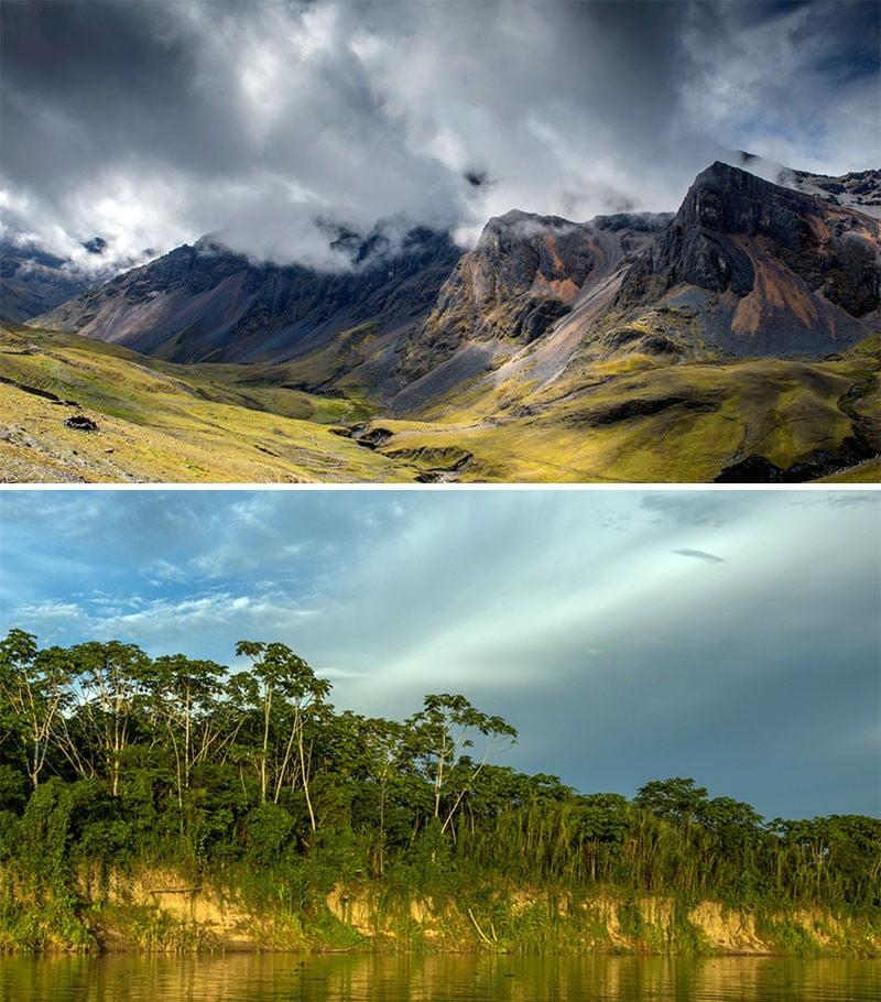 Perú cuenta con tres nuevas áreas de conservación regional en Huánuco, Ucayali y Cusco