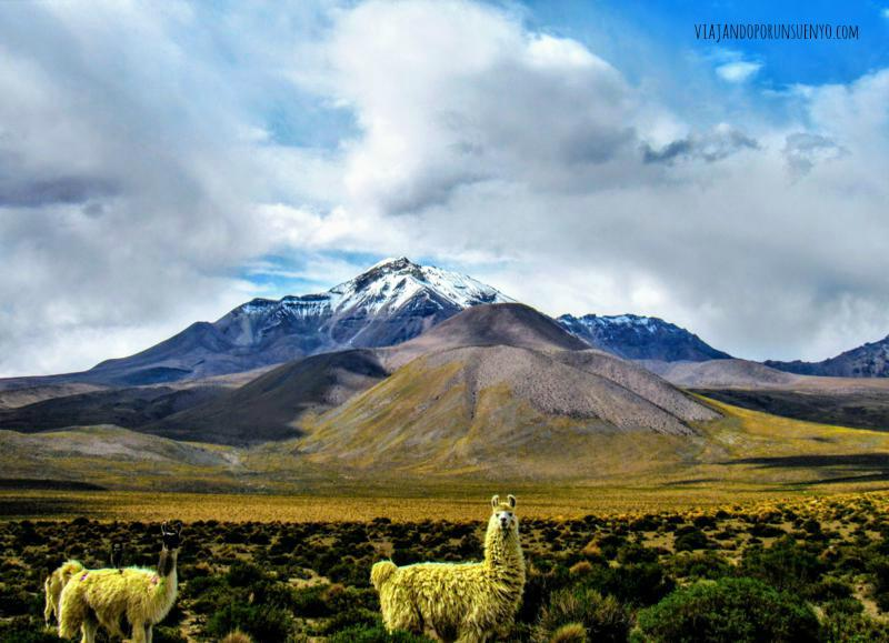 Postal Bolivia-Chile