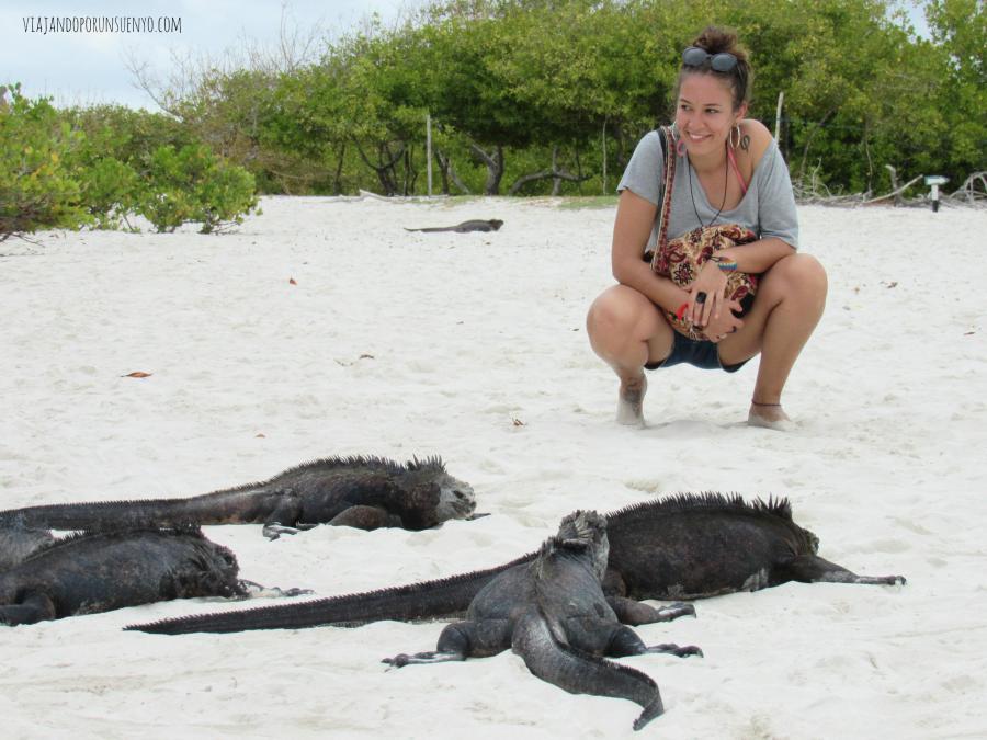 Carol galápagos