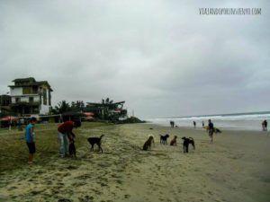 Juan de Viajando por un Sueño en la costa ecuatoriana
