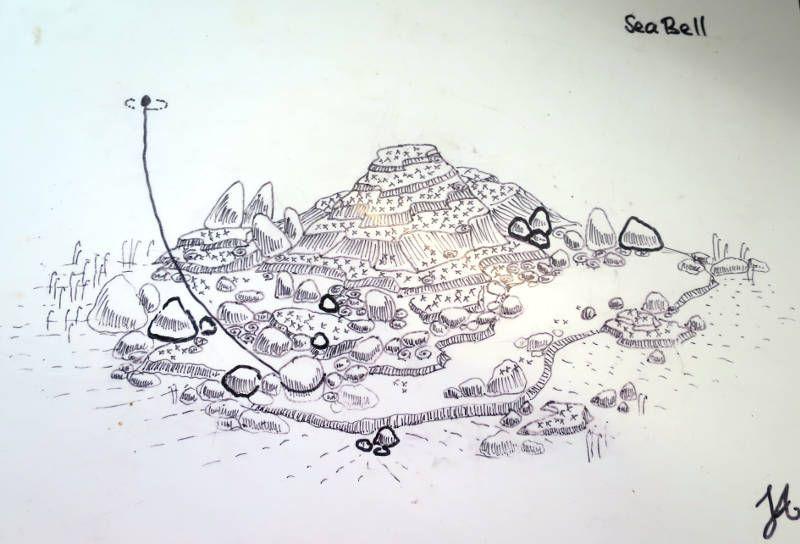 islas perhentian buceo