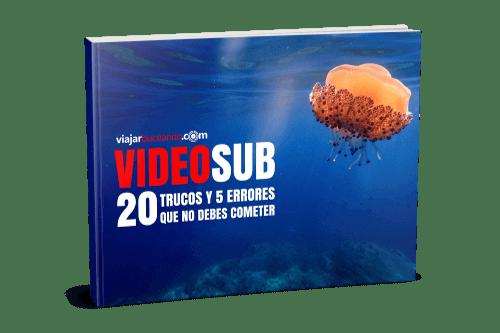 guía de iniciación al videosub