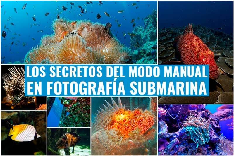 modo manual en fotografia submarina