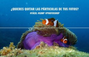 quitar partículas fotografias submarinas