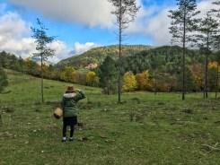 bosque de berga en barcelona catalunya