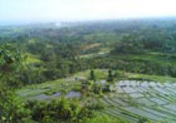 bukit jati Bali